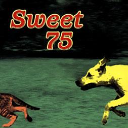 Sweet 75 - Sweet 75 (1997) FLAC